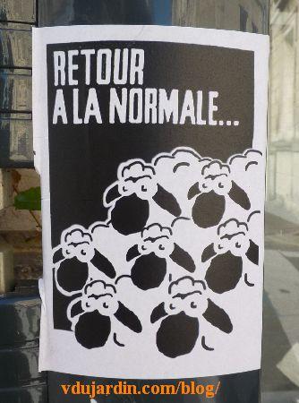 Poitiers, M. Mouton, septembre 2014, retour à la normale