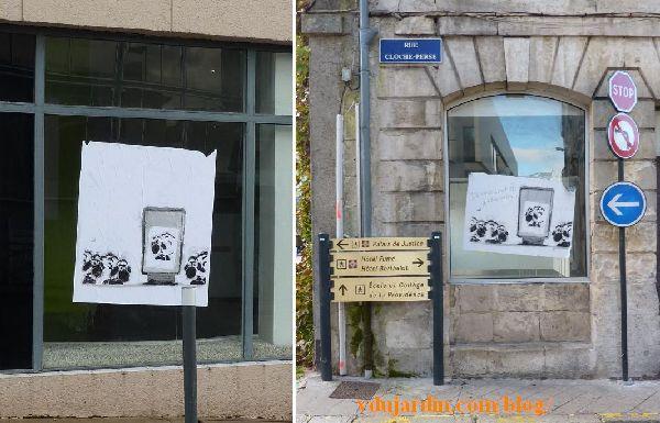 Deux vitrines avec un mouton face à un panneau publicitaire